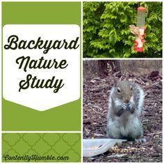 Backyard Nature Study