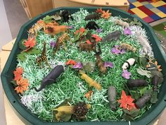 EYFS tuff spot - Jungle animals in shredded green paper<br> Jungle Activities, Rainforest Activities, Preschool Jungle, Rainforest Theme, Eyfs Activities, Nursery Activities, Animal Activities, Toddler Activities, Toddler Games