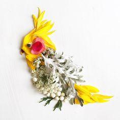 Cockatiel - Bridget Beth Collins - Flora Forager -            floraforager.com