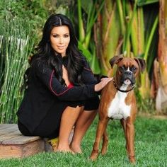 Boxer Dogs Kim Kardashian with her Boxer dog Beautiful Dogs, Animals Beautiful, Adorable Animals, I Love Dogs, Cute Dogs, Awesome Dogs, Dog Car Barrier, Kim Kardashian, Celebrity Dogs