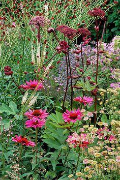 Perennial garden border