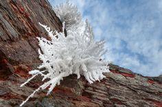 Hot ice by Beniamin Sabo on Serenity, Castle, Ice, Fine Art, Flowers, Plants, Flora, Ice Cream, Visual Arts