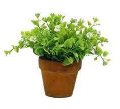 St Bonsai- Faker Leaf Plant with a Pot-7(inch) Plastic -- You can find out more details at the link of the image.