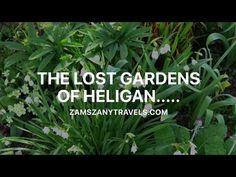 Zam's Zany Travels!: The Lost Gardens of Heligan....