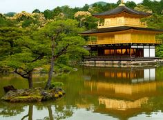 This was one of the most beautiful temples I have seen. Golden temple in Kyoto Japan. It's so perfect it almost looks #fake #temple #goldentenple #Japan #likeforlike #followme #me #travel #tourist #park #traveling #follow #greenery #peace #peaceful #nofilter #followme #canadiangirl #like4like #tourism #igers #instagood #happy #love #takenwithiphone #like #holiday #instatravel #kyoto #kyotojapan by amandadyer
