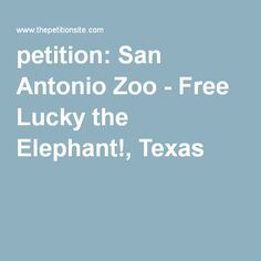 petition: San Antonio Zoo - Free Lucky the Elephant!, Texas