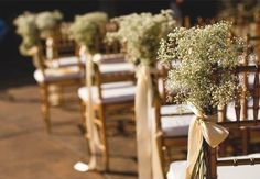 baby's breath and gold ribbon