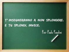 Pier Paolo Pasolini Citazioni