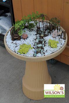Fairy Garden #Cute_garden_Design ##Garden_Design_Ideas #Simple_landscape_lighting_ideas #optimumgarden.com
