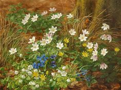 "Anthonore Christensen (Danish, ""Flowers in a forest floor"" Oil Painting Flowers, Drawing Flowers, Flower Paintings, Oil Paintings, Forest Art, Forest Floor, Botanical Art, Flower Art, Wild Flowers"