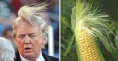 The public has always enjoyed a laugh at the expense of renowned real-estate mogul Donald Trump's 'interesting' hair styling decisions, and his controversial and outspoken U.S. presidential candidacy has brought his hair to the fore-front (or to the crown, if you will) of American politics. These Donald Trump look-alikes show where this billionaire might get the inspiration for his signature look.