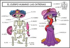 Vocabulario: El cuerpo humano - Las catrinas