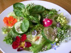 """edible flower salad with a radish """"mushroom"""""""