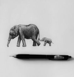 Elephant mother and calf, graphite drawing #elephant #drawing #pencil #sketch #sketchbook #art #artist