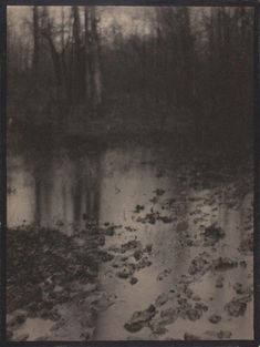 Edward Steichen The Pool — Evening: A Symphony to a Race and to a Soul 1899 platinum print with hand-applied ink border, mounted on original grey paper, mounted on large sheet of original buff paper Edward Steichen, Alfred Stieglitz, Museum Of Modern Art, Art Museum, Monochrom, Art Institute Of Chicago, Nocturne, Magazine Art, Van Gogh