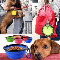 FREE Worldwide SHIPPING!  $17.80 NOW $13.80 Mini Travel Pet Bowl It is portable, foldable and holds both water and food. Great for traveling, camping, climbing or even walking your pet. You can feed your pet anytime anywhere now. Your pet will not go thirsty anymore! #discountvault