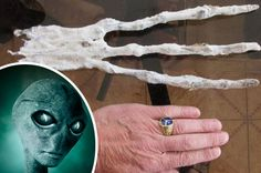 AREA 52 UFO: UFO experts stunned at 'alien hand' discovered in ...