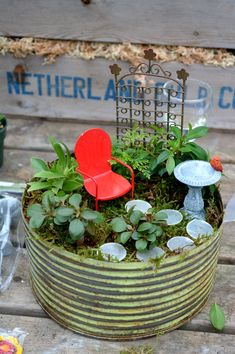 A customer created this cute miniature garden in a pot during one of our workshops!