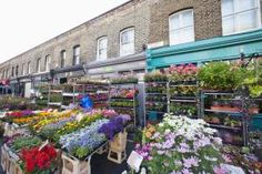 Columbia Road Flower Market, London - Credit: Eurasia Press / Getty Images