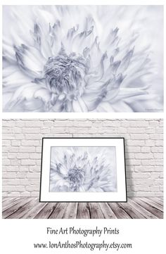 Black and White Print, Black and White Flower Photography, Floral Wall Art Print, Dahlia Photograph, Art Print for Bedroom, Romantic Art #wallart #walldecor #photoprint #flowerphotography #blackandwhite #photography