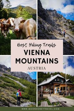 Discover the best hikes near Vienna in the Vienna Mountains (Wiener Hausberge / Wiener Alpen), Austria. You can do these hikes as day trips from Vienna, starting in mid-late May through October (depending on the weather conditions).   #vienna #austria #viennamountains #wienerhausberge #raxalpe #schneeberg #hikingaustria #viennadaytrips #daytripsfromvienna. Worlds Of Fun, Around The Worlds, Day Trips From Vienna, Austria Travel, Travel Europe, Honeymoon Inspiration, Best Hikes, Day Hike, Hiking Trails