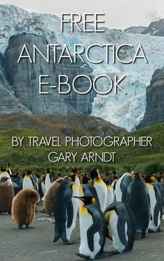 Last January I fulfilled a life long goal when I visited Antarctica, the Falkland Islands and South Georgia Island with G Adventures on the M/S Expedition. The voyage was everything I hoped it would be and more.  My 50 page photography e-book from that experience is now available as a free download--no signups required or forms to fill out, just click the link.