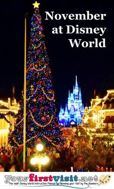November 2015 at Walt Disney World - The Walt Disney World Instruction Manual -yourfirstvisit.net