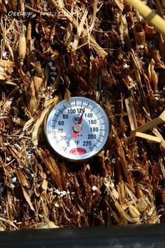 Straw bale gardening - Bales are getting hot - When can I plant? #gardening #dan330 http://livedan330.com/2015/05/11/bales-are-getting-hot-when-can-i-plant-straw-bale-conditioning/