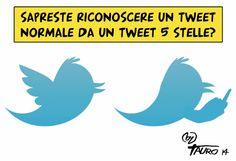Tweeto medio