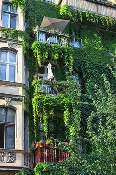 ღღ GREEN FOREST BUILDING - Berlin, Prenzlauerberg