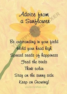 Be bright and proud, yet humble.. like sunflower..