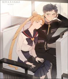Sailor Moon / Usagi and Seiya, sometimes I wish those two would have stayed together