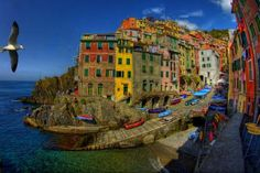 riomaggiore italy  view lovely sunny beautiful bird sailboats water architecture house peaceful waves boat colorful splendor sailing chair town clouds beauty sailboat nature way colors italia sky alley houses sea boats chairs