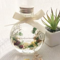 Creema, Terrarium, Diy And Crafts, Packaging, Home Decor, Terrariums, Decoration Home, Room Decor, Wrapping