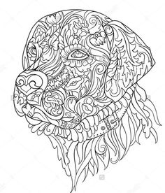 coloring pages - Labrador Stock Vectors, Images & Vector Art Dog Coloring Page, Bible Coloring Pages, Printable Adult Coloring Pages, Mandala Coloring Pages, Animal Coloring Pages, Coloring Pages To Print, Coloring Books, Zentangle Patterns, Vector Art
