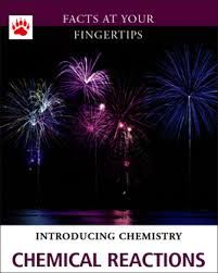 What is a chemical reaction? -- Chemical bonds -- Types of reactions -- Energy in chemical reactions -- Heat and chemical reactions -- Entropy and free energy -- Rates of reactions -- Catalysts -- Electrochemistry -- Nuclear reactions. Chemical Substances, Chemical Reactions, Chemical Nomenclature, Nuclear Reaction, Chemical Bond, Student Learning, Chemistry, Chemical Change, Science