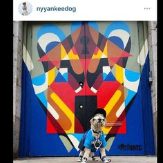 Always amusing following what photos you are tagged in by the public. Especially painting a mural on a busy street like Lafayette in SOHO, NYC.  This dogs got style  @nyyankeedog #reka #rekaone #214lafayette #mural