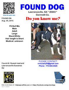 Found Dog - Pit Bull - Lawrenceville, GA, United States