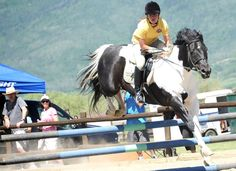 Arielle Gold looks ahead for the next jump even as her horse clears an obstacle Saturday during the Cayuse Classic at Sidney Peak Ranch near Steamboat Springs. The event drew about two dozen riders for a series of competitions.
