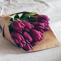 A Surprise Bouquet of Tulips