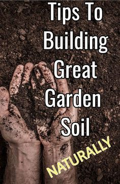 To Building Great Garden Soil.Naturally Simple Tips For Building Garden Soil Naturally.Simple Tips For Building Garden Soil Naturally. Vegetable Garden Planner, Indoor Vegetable Gardening, Garden Compost, Organic Gardening Tips, Planting Vegetables, Hydroponic Gardening, Organic Vegetables, Growing Vegetables, Organic Compost