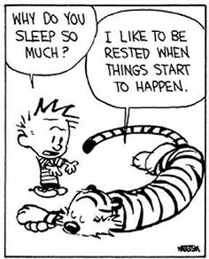 Calvin and Hobbes life lessons photos) Calvin And Hobbes Comics, Best Calvin And Hobbes, Calvin And Hobbes Quotes, Humor Grafico, Baymax, Fun Comics, Hobbs, Just For Laughs, Comic Strips