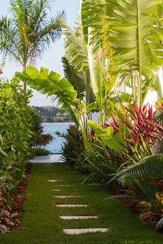 Here, we share tons of beautiful tropical backyard ideas for your ultimate reference! Pick the best tropical backyard that you really love now! Tropical Backyard Landscaping, Tropical Garden Design, Tropical Home Decor, Tropical Houses, Landscaping Plants, Tropical Plants, Landscaping Ideas, Tropical Gardens, Tropical Interior