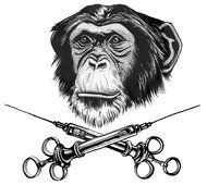 Apes Need Vaccines, Too - NYTimes.com