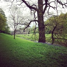 Photo caption: This is #WhyILoveYorkshire lush green at one of the worlds best heritage sites @Abbey