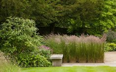 dan pearson landscape design / old rectory gardens, naunton gloucestershire Landscape Architecture, Landscape Design, Garden Design, Dan Pearson, Prairie Planting, Love Garden, Beautiful Landscapes, Garden Plants, Greenery