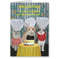 Funny Chef Cats Birthday Card