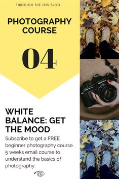 Learn everything you need to know about white balance with this free photography course for beginners #beginnerphotographer #whitebalance #photographytipsbeginner
