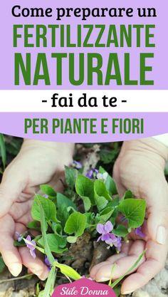Vegetable Garden, Garden Plants, Growing Plants, Cool Diy, Fertility, Bonsai, Gardening Tips, Farmer, Flower Arrangements