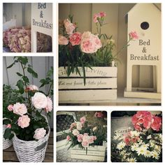 Blomster, flower, collage
